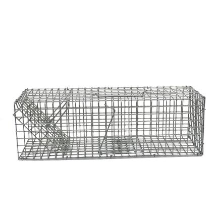 Cage piège à souris et rats Edialux 1 entrée