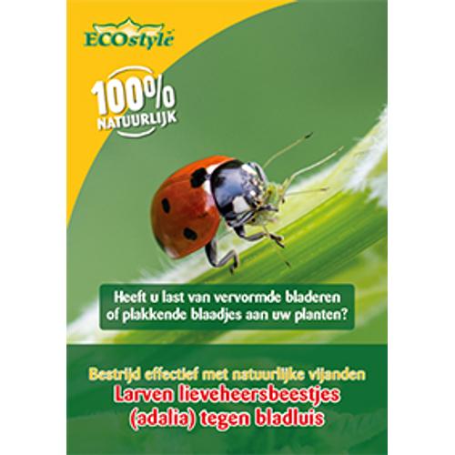 Ecostyle larven lieveheersbeestje tegen bladluis 5m²