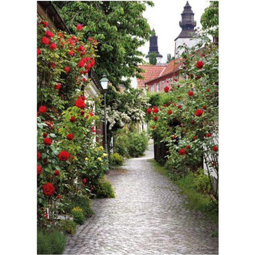 PB-Collection tuinschilderij Alley Roses 70x50cm