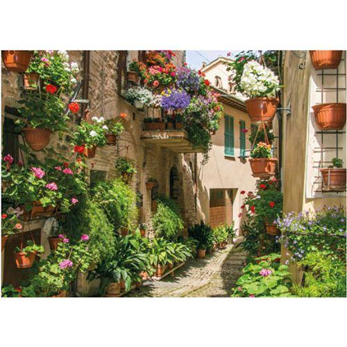 PB-Collection tuinschilderij Flower street 70x50cm