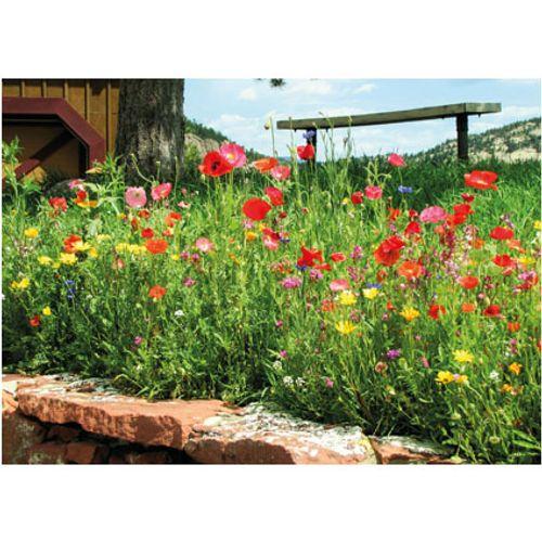 PB-Collection tuinschilderij Poppy 70x50cm