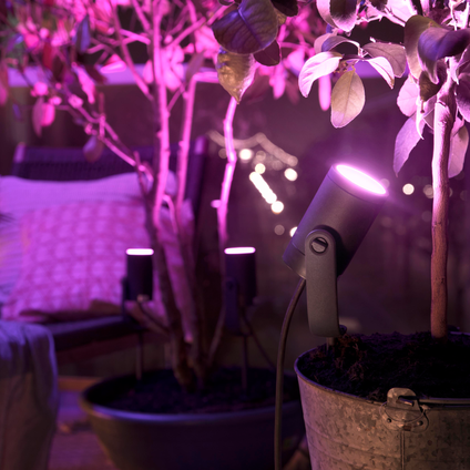 Philips Hue tuinspot Lily 8W
