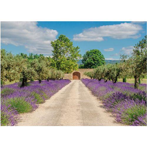 PB-Collection tuinschilderij Lavender View Door 130x70cm