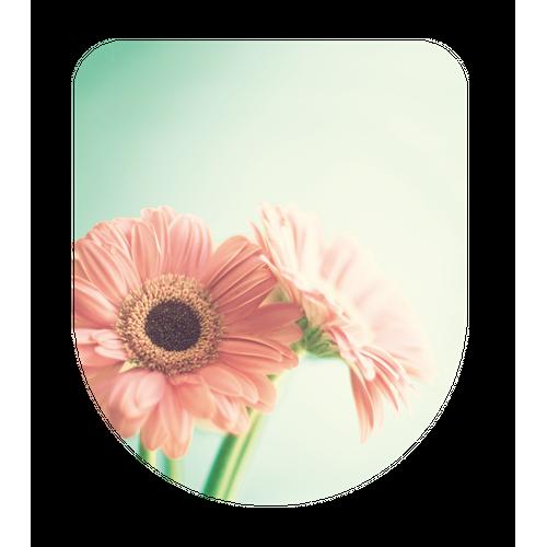 Aquazuro WC-bril Flower groen-roze Duroplast
