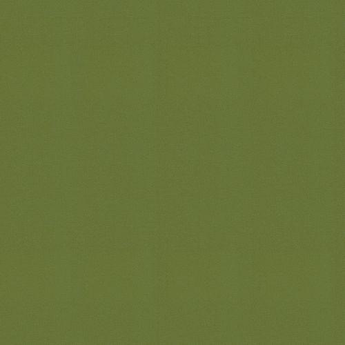 Decomode papier peint intissé Uni elegant leaves vert