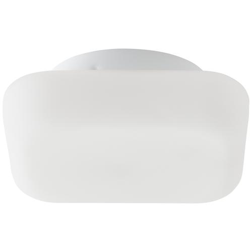 Aquavive plafondlamp Rikuri wit E27