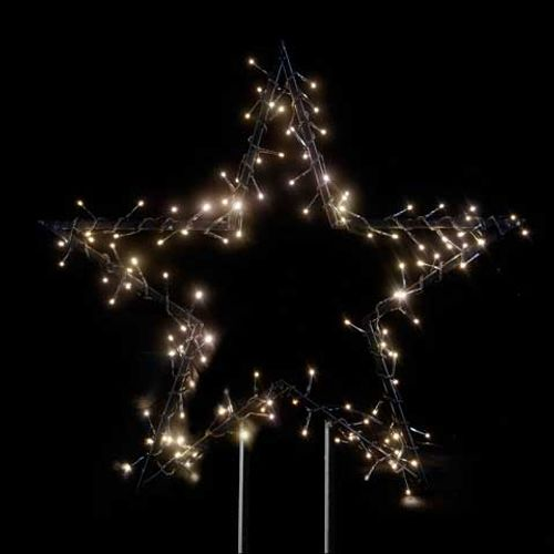 Lumières de Noël poinsettia avec piquants Central Park